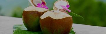 Troopiline kookos